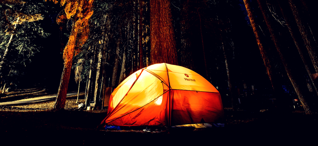 Tent with light inside sitting in front of large trees at night.