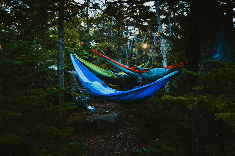 Three multi-colored hammocks suspended in the woods from trees.