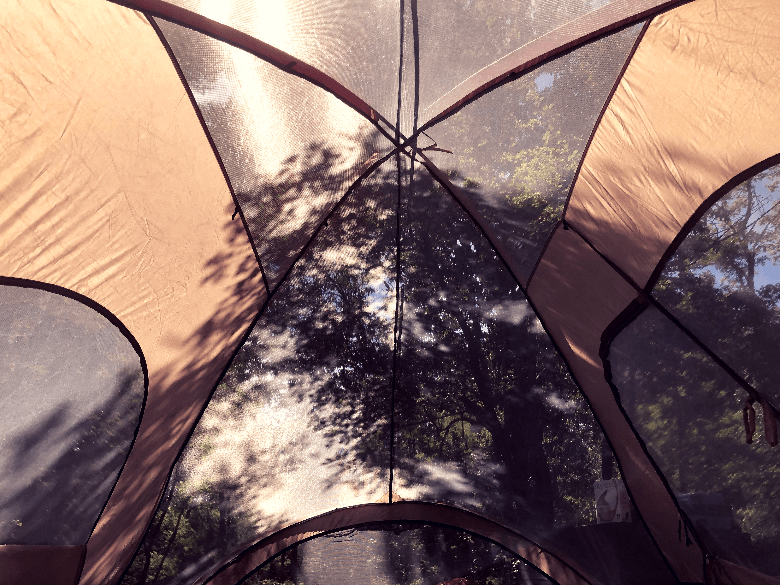 See-through mesh tent ceiling with trees on the other side.