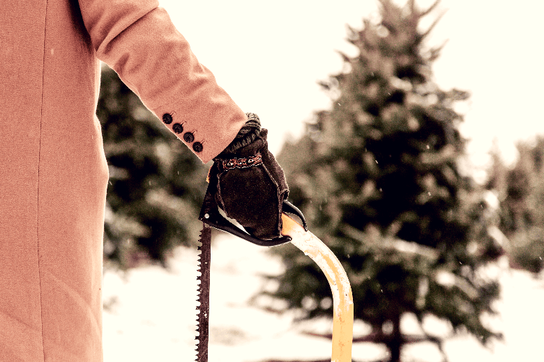 Gloved hand in a winter setting holding a bow saw in front of an evergreen tree.