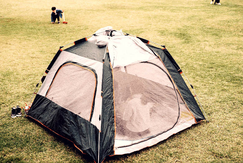 Tent with lots of mesh sitting in the middle of a grass field.